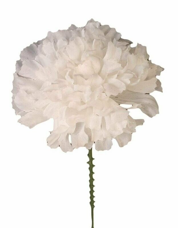 S3000WHT - Carnation Pick $16.95 ( Box 100)