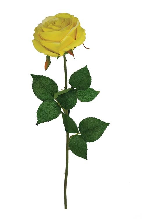 "SS2019YEL - 19"" Natural Yellow Open Rose Stem $25 per dozen SS2019YEL"