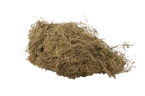 7003 - 4 lb Bulk Natural Spanish Moss ( Not Preserved) 7003