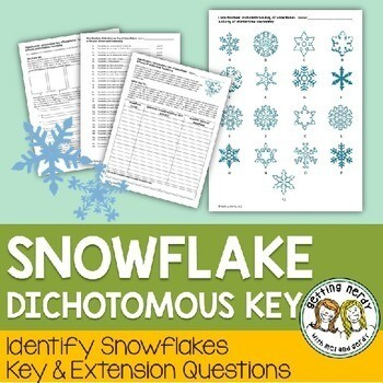 Christmas Science a Winter Snowflake Dichotomous Key - Holiday Taxonomy