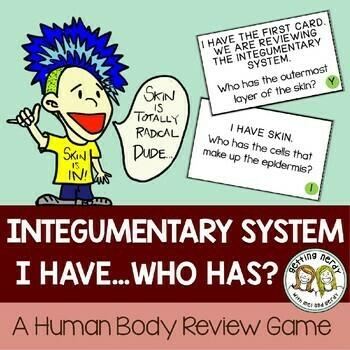 Integumentary system - Human Body