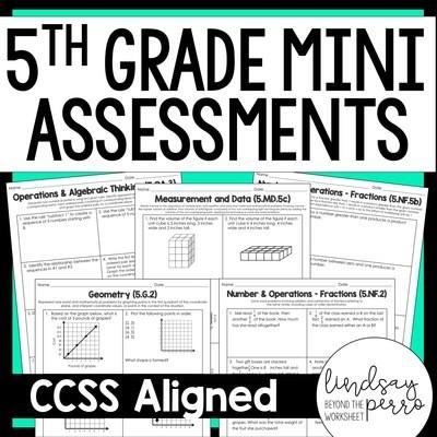 5th Grade Math Common Core Mini Assessments