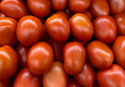 ቲማቲም Tomato (Ethiopia Only)