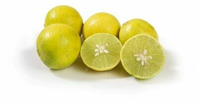 ሎሚ Lemon (Ethiopia Only)