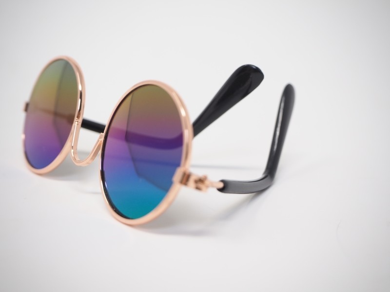 Sunglasses for your Cat or Little Pip!