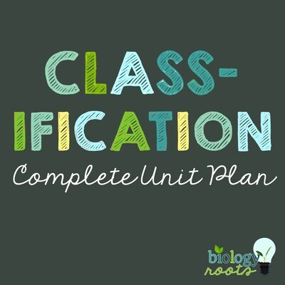 Classification Unit Bundle