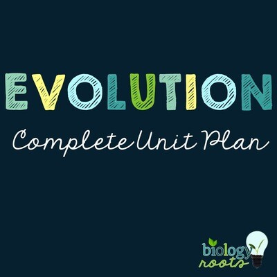 Evolution Unit Bundle