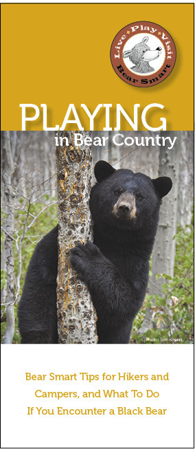 Playing in Bear Country