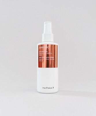 set & style spray