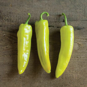 Banana Pepper Plant