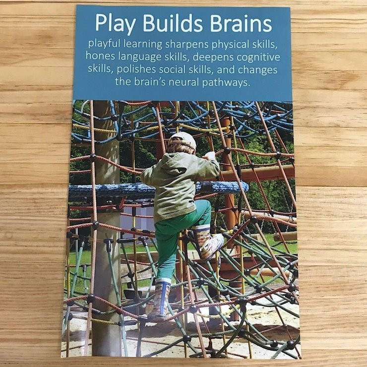 Play Builds Brains Poster