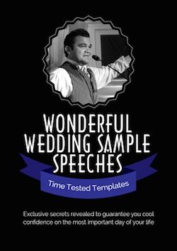 eBook PDF WONDERFUL WEDDING SAMPLE SPEECHES