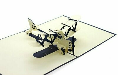 Pop Up Airplane Card