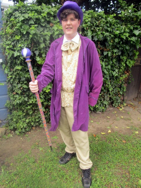 Walking cane shown with purple top