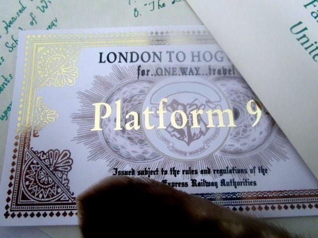 *Wizarding School Express Train Ticket elf1030