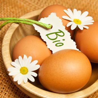 30 œufs frais bio code: 0 00479