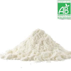PRO: inuline d'agave bio (PAR SAC DE 20 KG) 00244