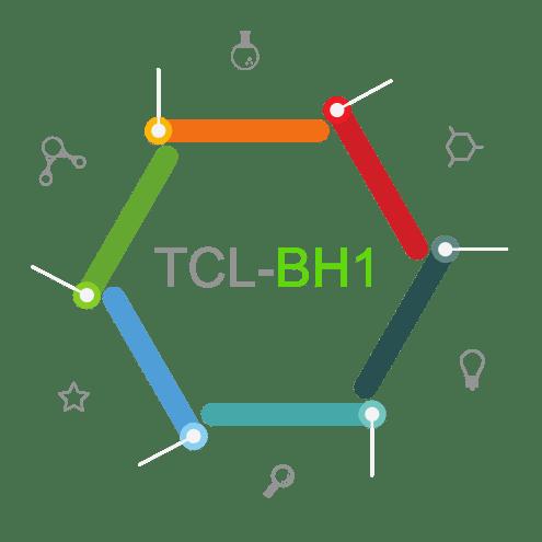 BH01 - Business Hosting option 1 (shop / blog)
