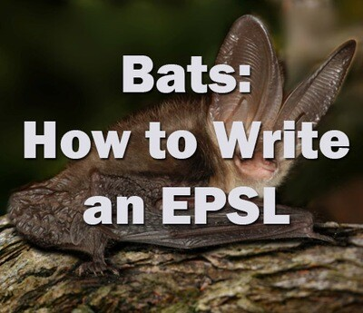 Bats: How to write an European Protected Species Licence - Devon - Monday 3rd February 2020