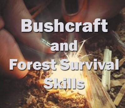 Bushcraft and Forest Survival Skills (Nr Exeter): 22nd May 2020