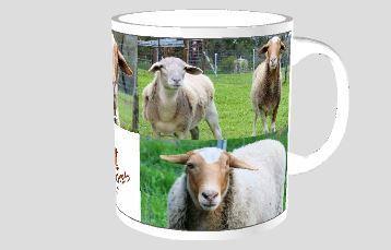 Leela mug