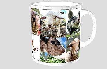 Coffee Mug - Happy Hooves Residents (mix 1) 00005