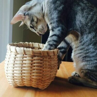 CLASS IS FULL: Cathead Basket: Saturday, January 11, 2020.  2:30-6:30 PM.