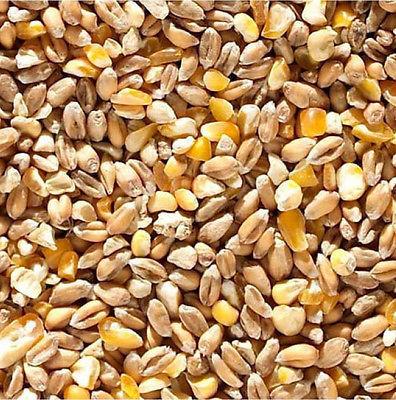 Poultry Corn - mixed per 1 kg