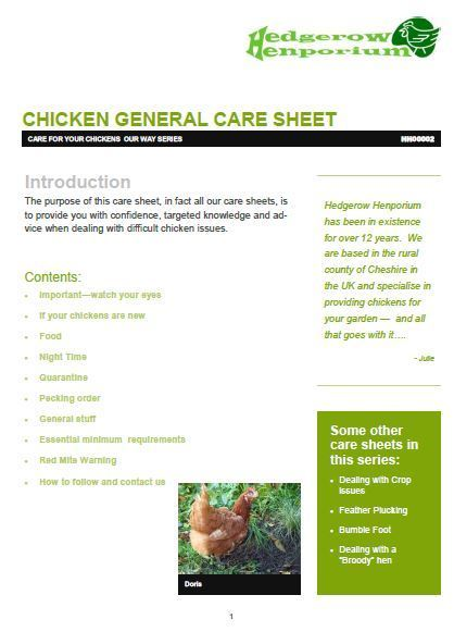 Chicken general care sheet - HH00002 00023