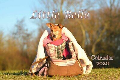Little Belle Calendar 2020