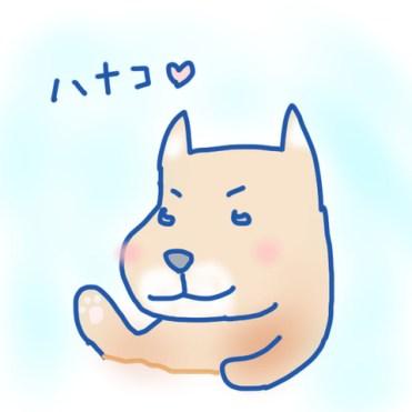 愛犬ハナコちゃん
