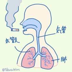 喫煙すると…