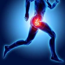 hip painful skeleton xray