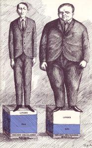 Maigerur et obesite, Roland Topor