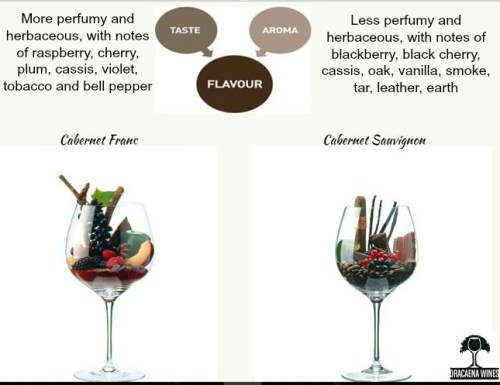 Difference Between Cabernet Franc and Cabernet Sauvignon