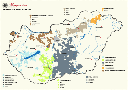Are You Hungary for Wine?