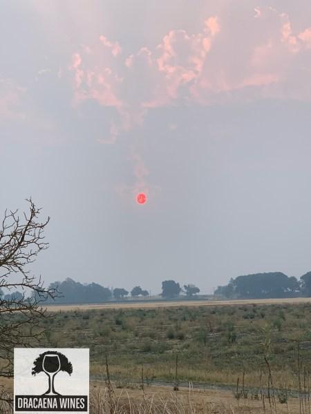 sun among smoke