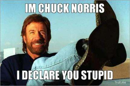 im-chuck-norris-i-declare-you-stupid