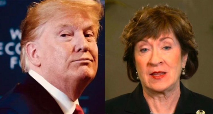 Cory Gardner Morning Joe ridicules Susan Collins after Trump makes her look like a fool again