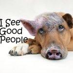 I See Good People