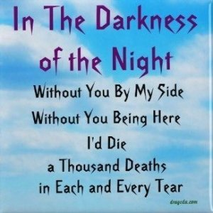 In the Darkness of the Night Fridge Magnet