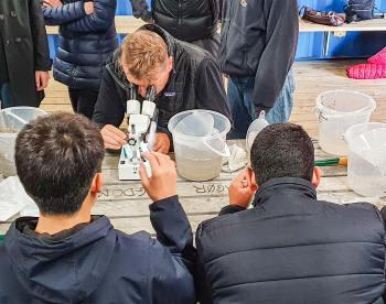 Prøverne undersøges under mikroskop.