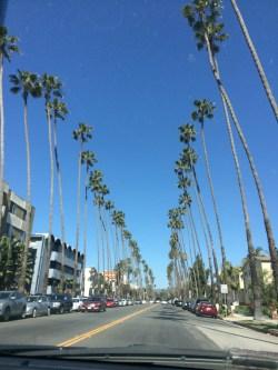 Aviva's trip to LA!