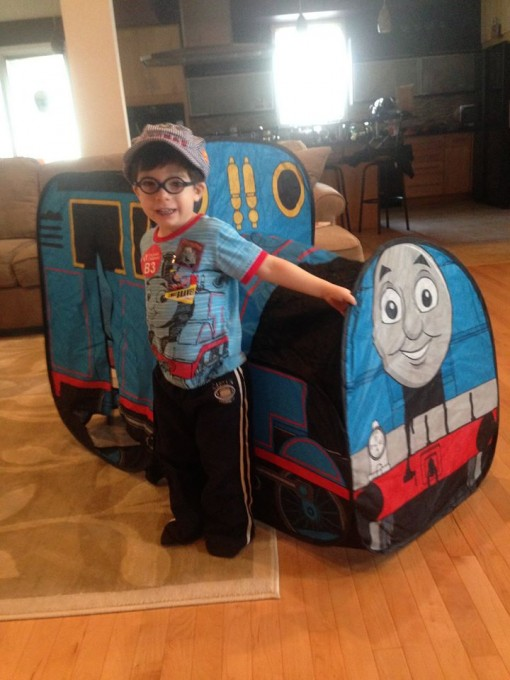 A Dragonfly Who Loves Thomas the Train