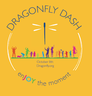 Dragonfly Dash Logo