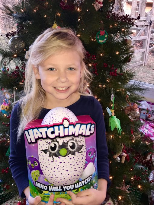 Hailey auctions her Hatchimal for Dragonfly