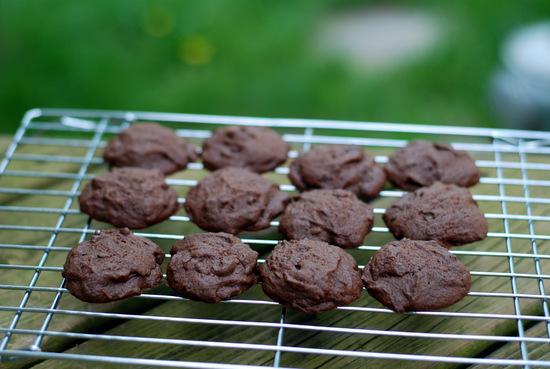 chocolate mint cookies on rack