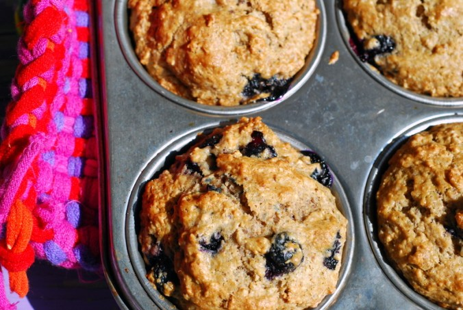 muffins in tray