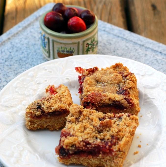 cranberry bars outside