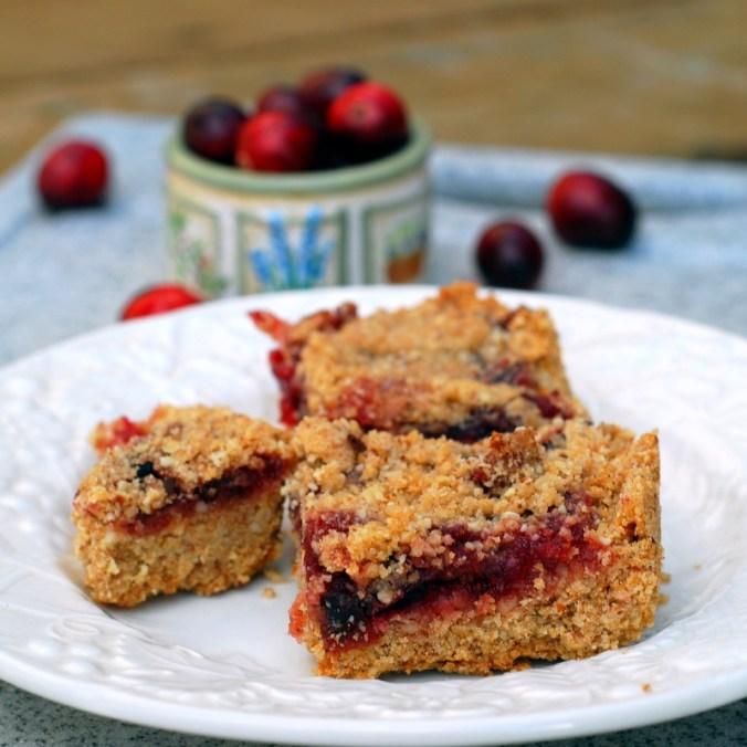 cranberry bars 7